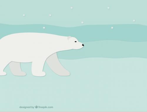 Impact de l'environnement sur les ours polaires
