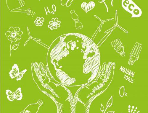 Cinq métiers dans le secteur de l'environnement.