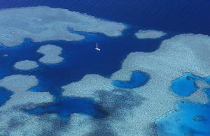 barriere-corail-patrimoine